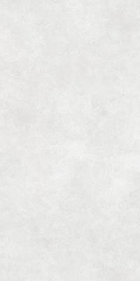 Плитка Inter Gres Harden светло-серый 60x120