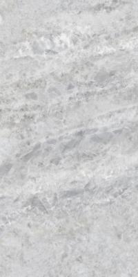 Плитка Inter Gres Roland серый полированный 60x120