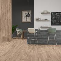 Плитка ECOCERAMIC WALKYRIA MAPLE 20х120 зображення 1