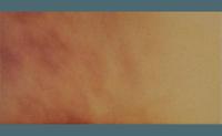 Jesienny Lisc 6606