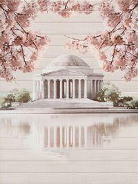 Sakura панно палац